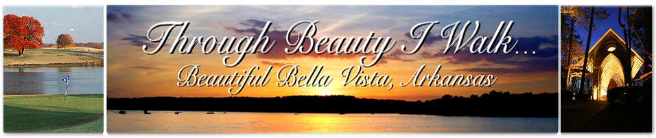 Beautiful Bella Vista Lake Loch Lomond Top Graphic with Golf Course and Cooper Chapel.