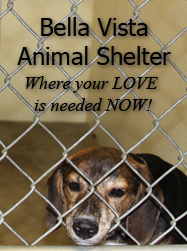 Bella Vista Arkansas Animal Shelter